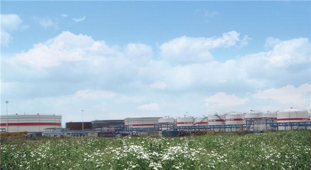 浙江天禄能源有限公司104万立方米油品储运工程